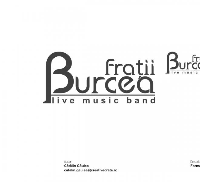Portofoliu-Creativecrate---Logo-Fratii-Burcea